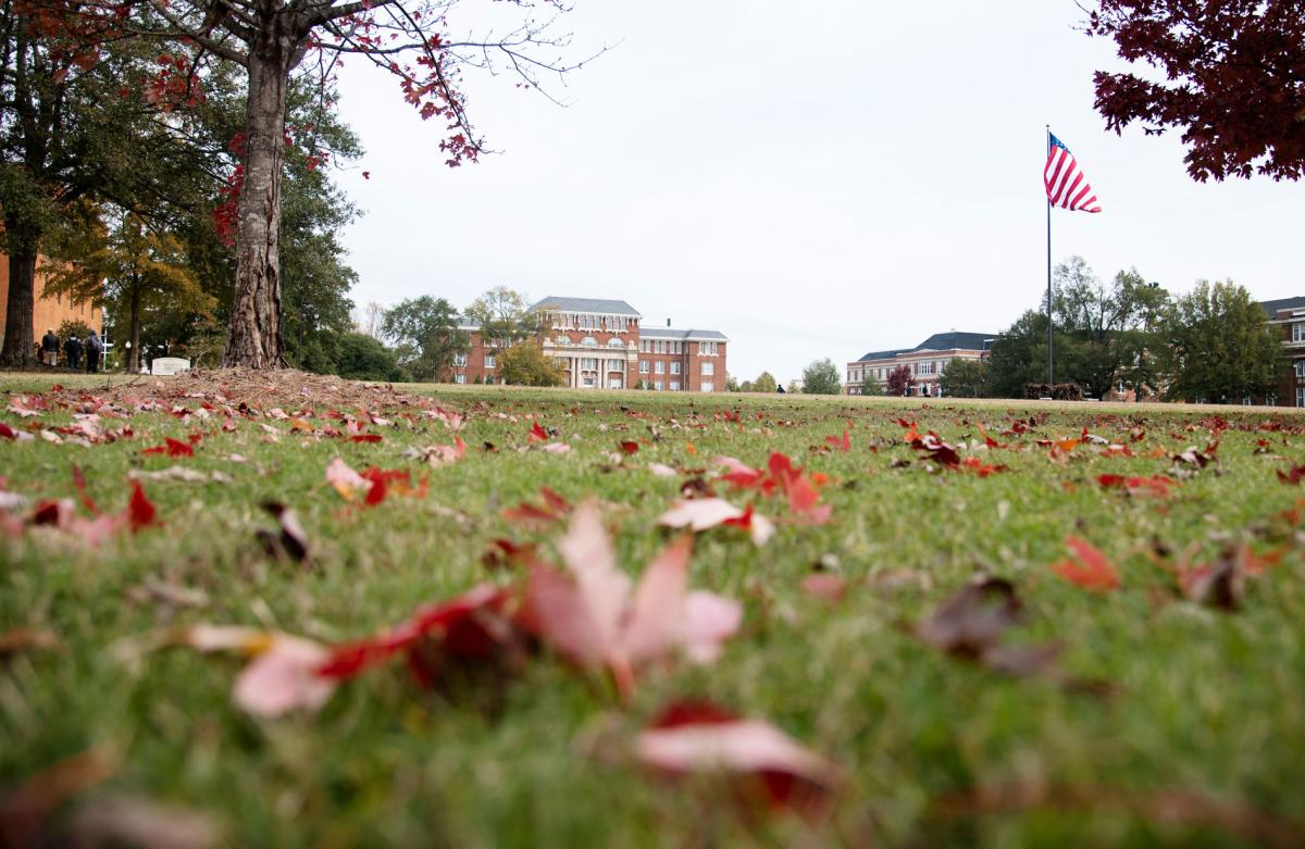 Drill field with leaves in fall